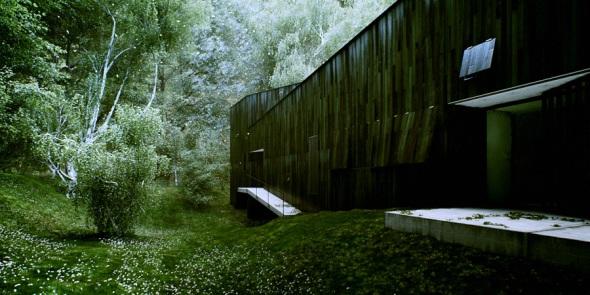 11_forestrefuge3